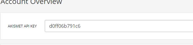 akismet-anti-spam-api-key