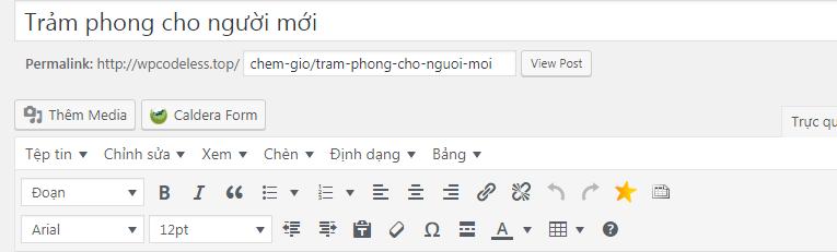 bo-soan-thao-wordpress-2