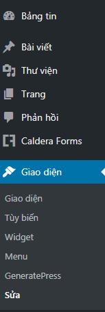 giao-dien-sua-wordpress