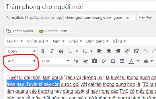sua-font-chu-bai-viet-wordpress-1