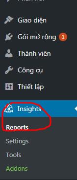 reports-truy-cap-1