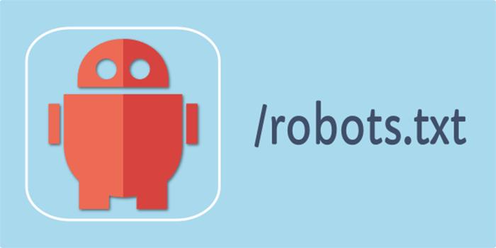robots-txt-file