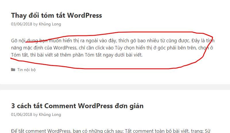tuy-chon-hien-thi-wordpress-4-min