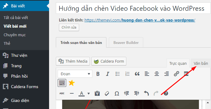 themevi-nhung-video-facebook-wp3-min