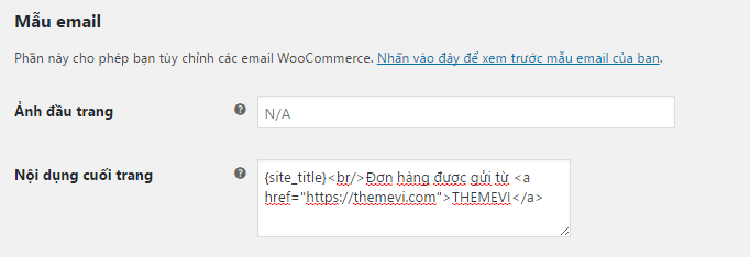themevi-email-don-hang4-min