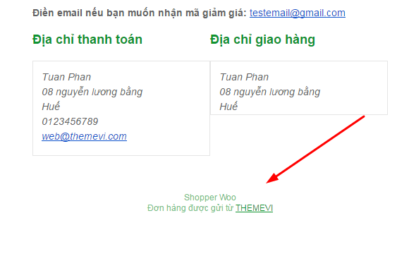 themevi-email-don-hang8-min